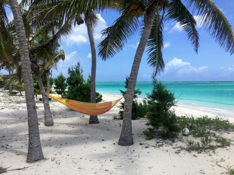 Whitby Beach Cottage Hammock and Palm Trees